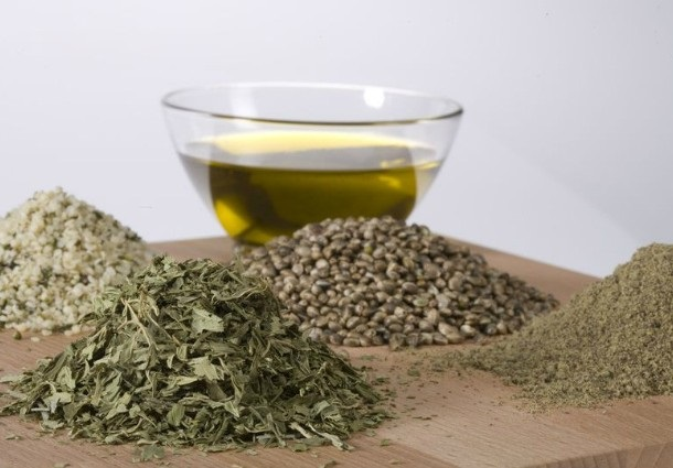 konopný olej ako bojovník proti kožným ochoreniam